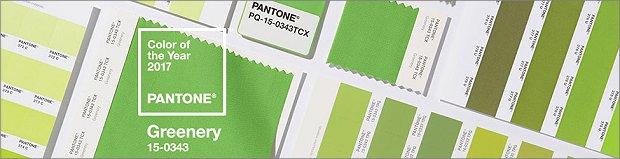 Pantone Farbe des Jahres 2017 - Greenery