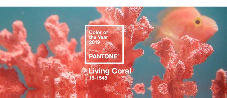 Pantone Farbe des Jahres 2019 – Korallenrot